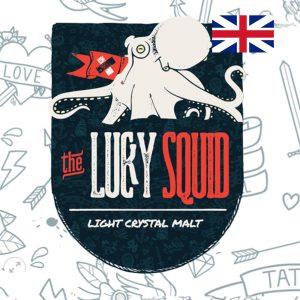 LUCKY SQUID LIGHT CRYSTAL